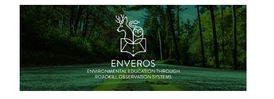 Environmental education through roadkill observation systems – the EnVeROS project
