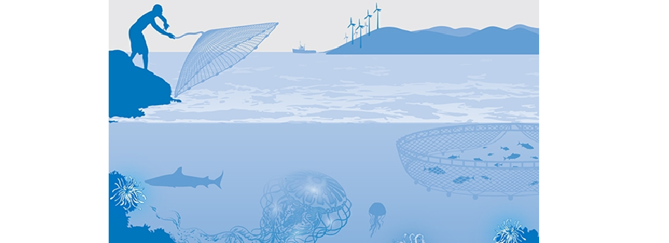 Public consultation on sustainable blue economy open for contributions until 7 December 2020